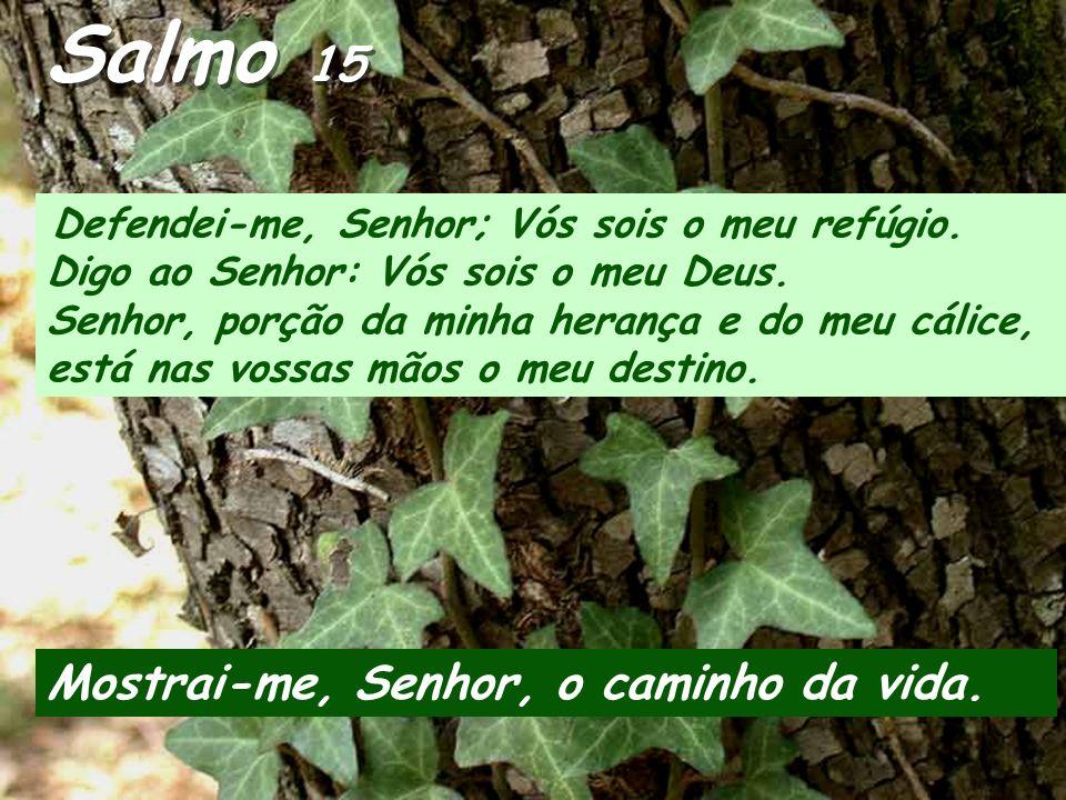 Salmo 15 Mostrai-me, Senhor, o caminho da vida.