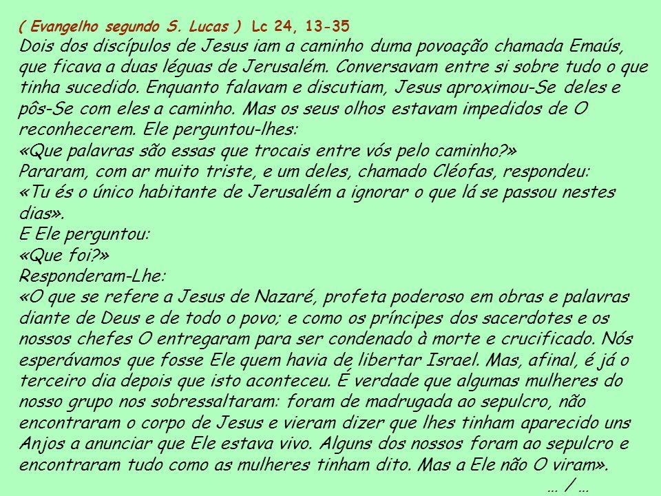 ( Evangelho segundo S. Lucas ) Lc 24, 13-35