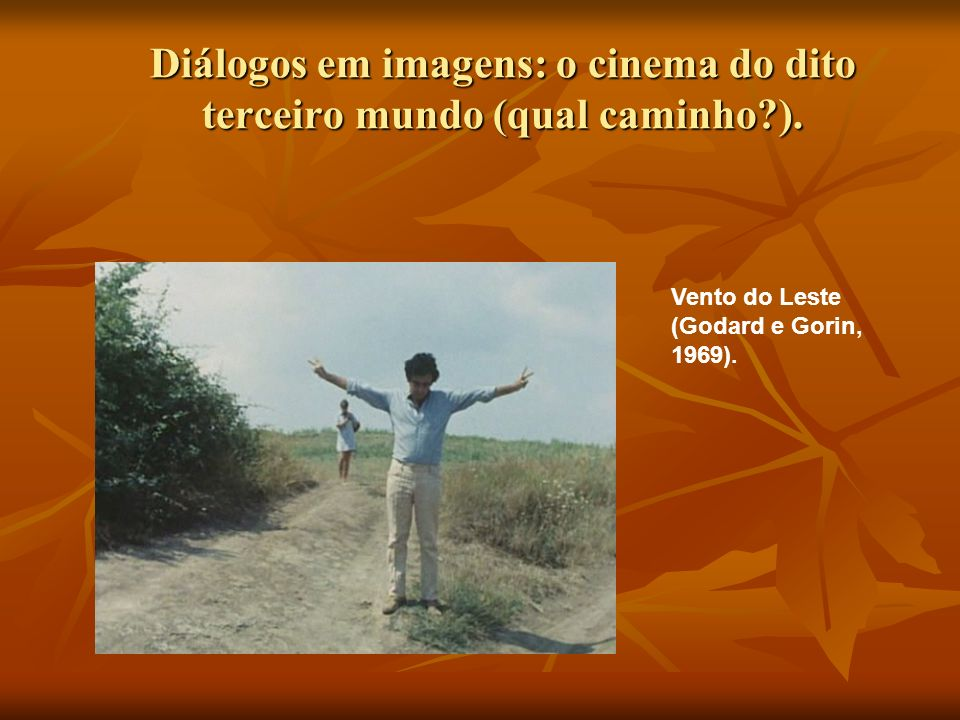 Diálogos em imagens: o cinema do dito terceiro mundo (qual caminho ).