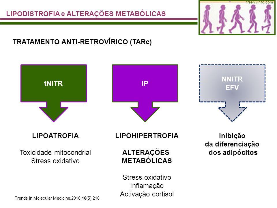 Toxicidade mitocondrial