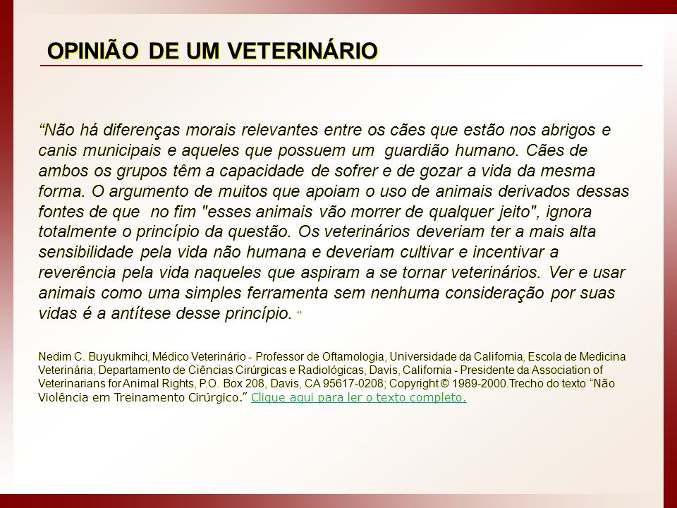 OPINIÃO DE UM VETERINÁRIO