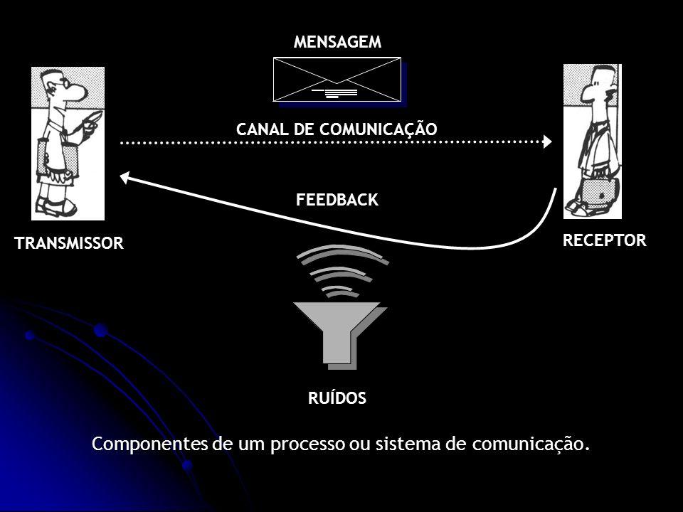 Componentes de um processo ou sistema de comunicação.