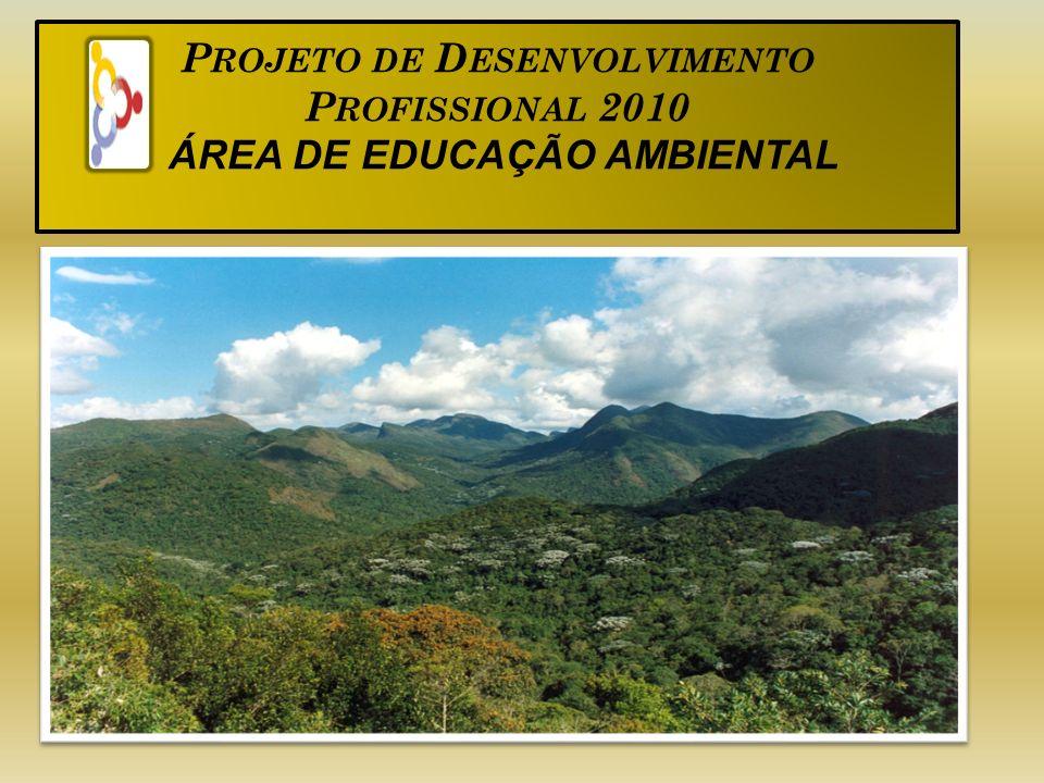 Projeto de Desenvolvimento Profissional 2010 ÁREA DE EDUCAÇÃO AMBIENTAL