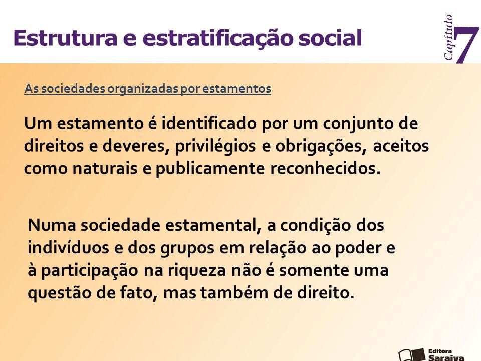7 Estrutura e estratificação social