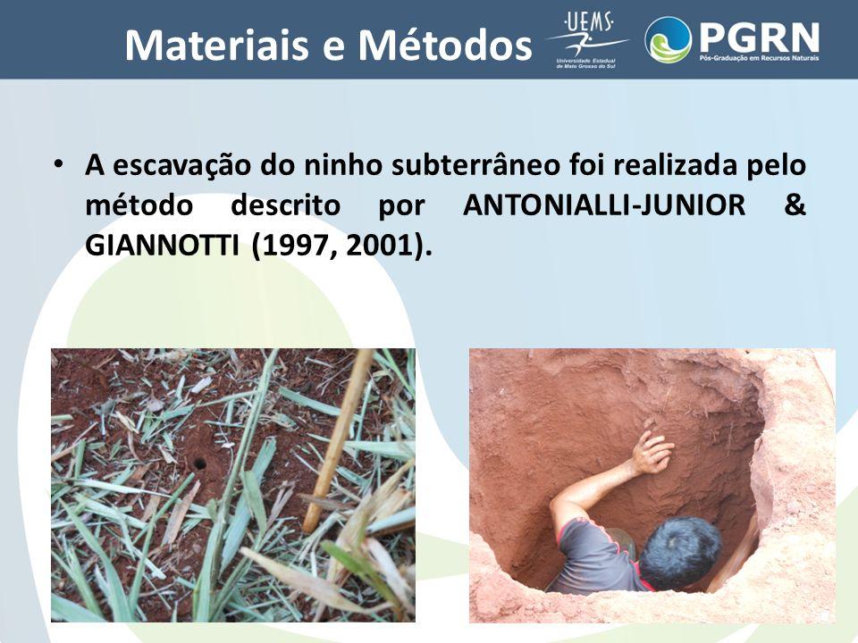 Materiais e Métodos A escavação do ninho subterrâneo foi realizada pelo método descrito por ANTONIALLI-JUNIOR & GIANNOTTI (1997, 2001).