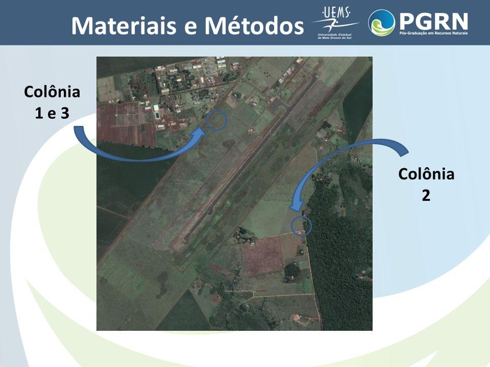 Materiais e Métodos Colônia 1 e 3 Colônia 2 Áreas de coleta