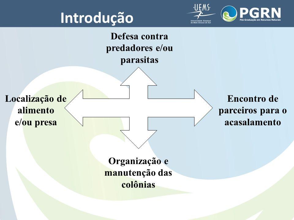 Introdução Defesa contra predadores e/ou parasitas