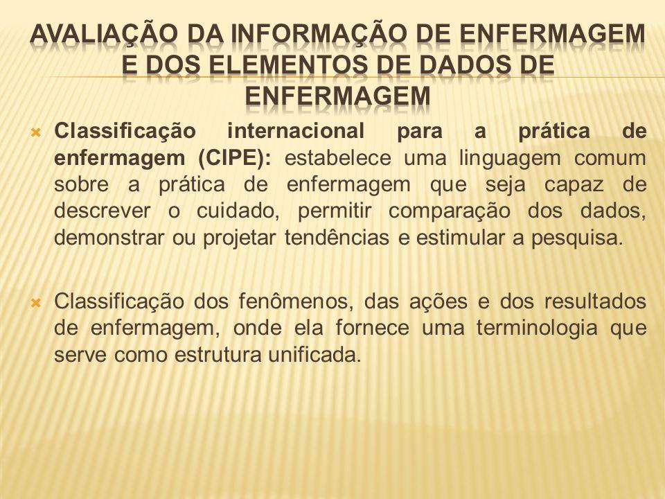 AVALIAÇÃO DA INFORMAÇÃO DE ENFERMAGEM E DOS ELEMENTOS DE DADOS DE ENFERMAGEM