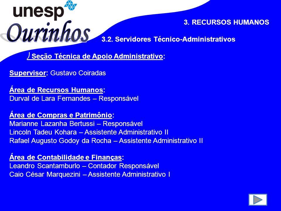 Ourinhos 3. RECURSOS HUMANOS 3.2. Servidores Técnico-Administrativos