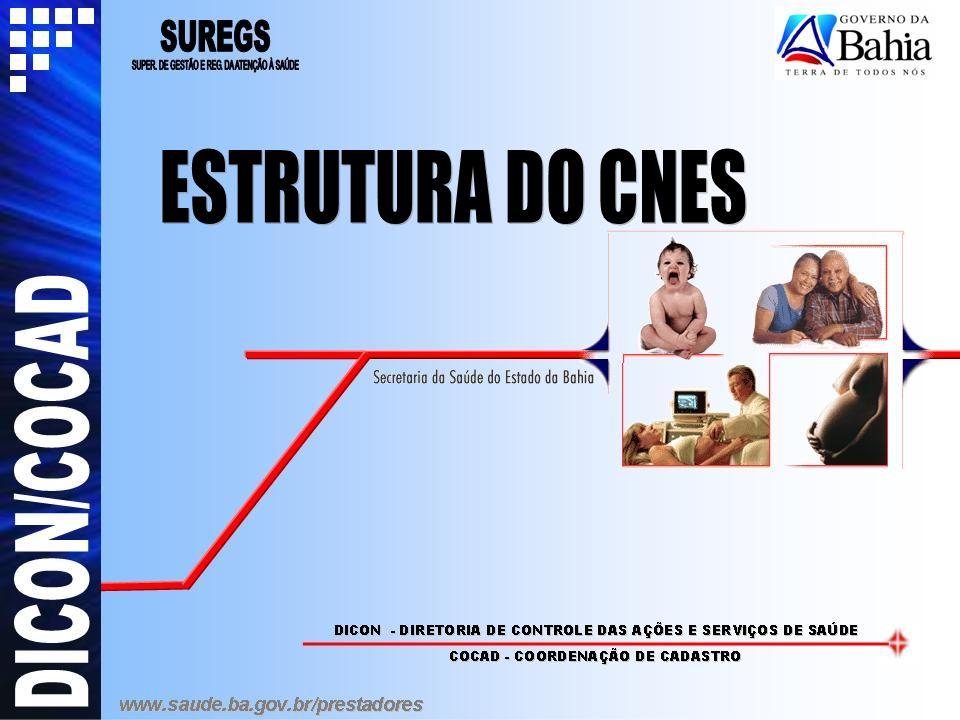 ESTRUTURA DO CNES