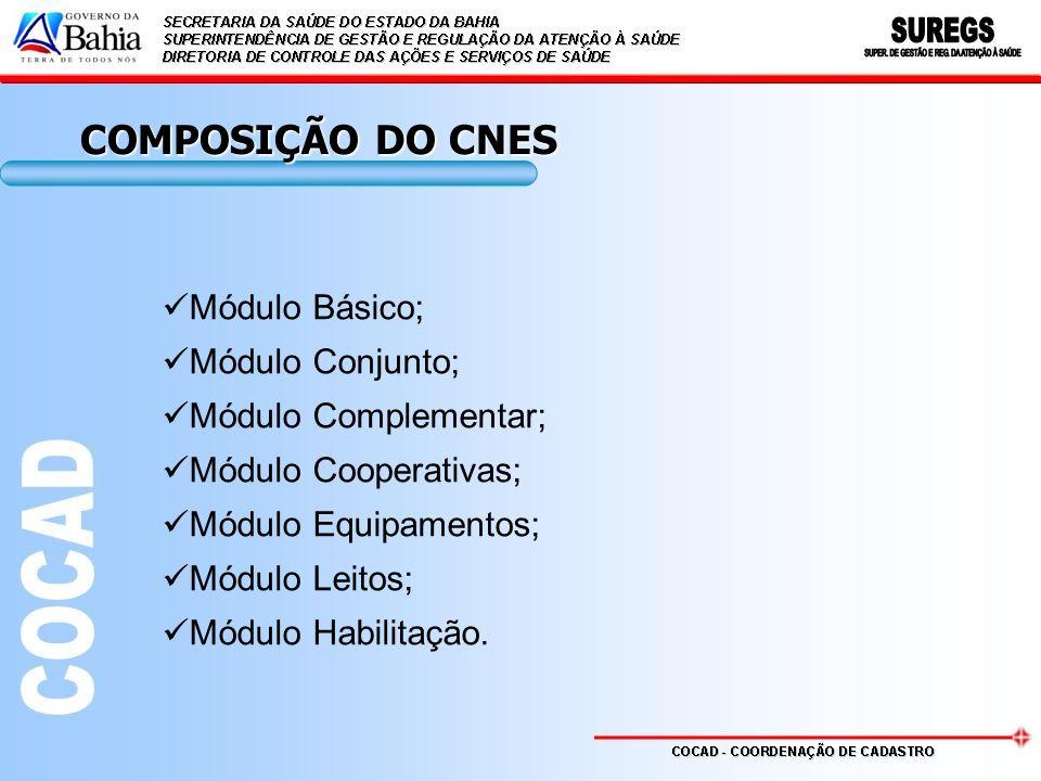 COMPOSIÇÃO DO CNES Módulo Básico; Módulo Conjunto;