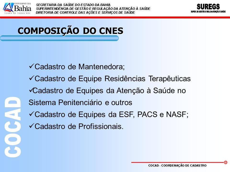 COMPOSIÇÃO DO CNES Cadastro de Mantenedora;