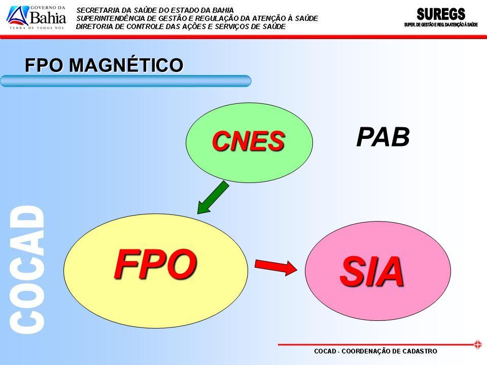 FPO MAGNÉTICO PAB CNES FPO SIA