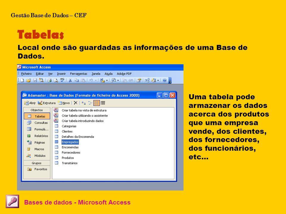 Tabelas Local onde são guardadas as informações de uma Base de Dados.