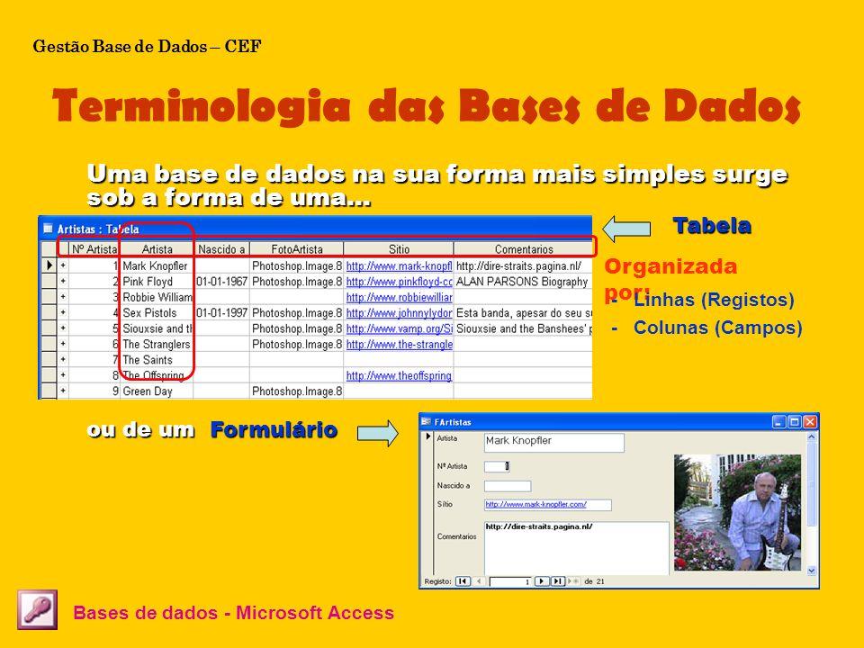 Terminologia das Bases de Dados