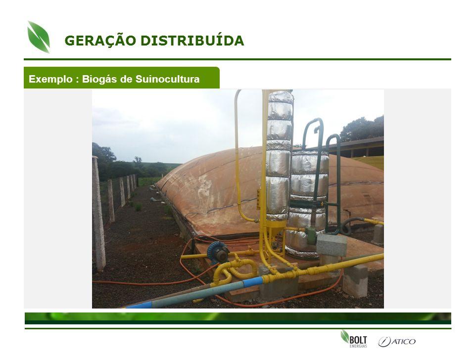 GERAÇÃO DISTRIBUÍDA Exemplo : Biogás de Suinocultura
