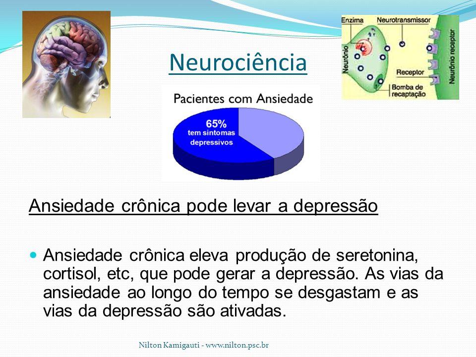 Neurociência Ansiedade crônica pode levar a depressão