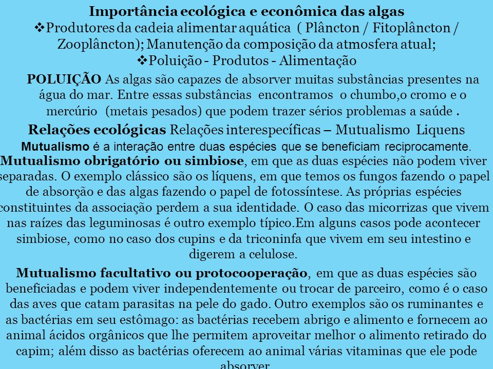 Importância ecológica e econômica das algas