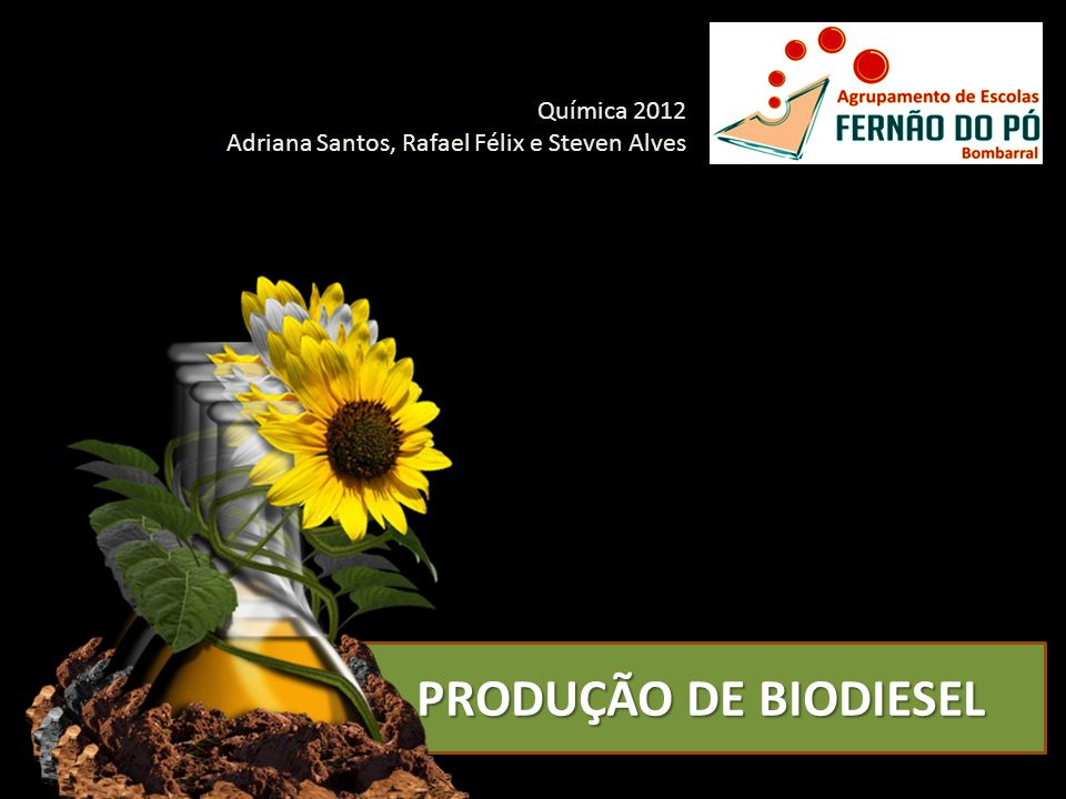 PRODUÇÃO DE BIODIESEL Química 2012