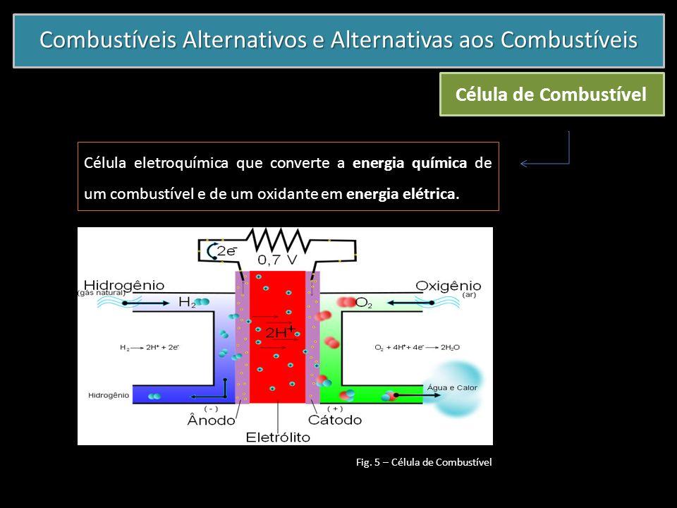 Combustíveis Alternativos e Alternativas aos Combustíveis