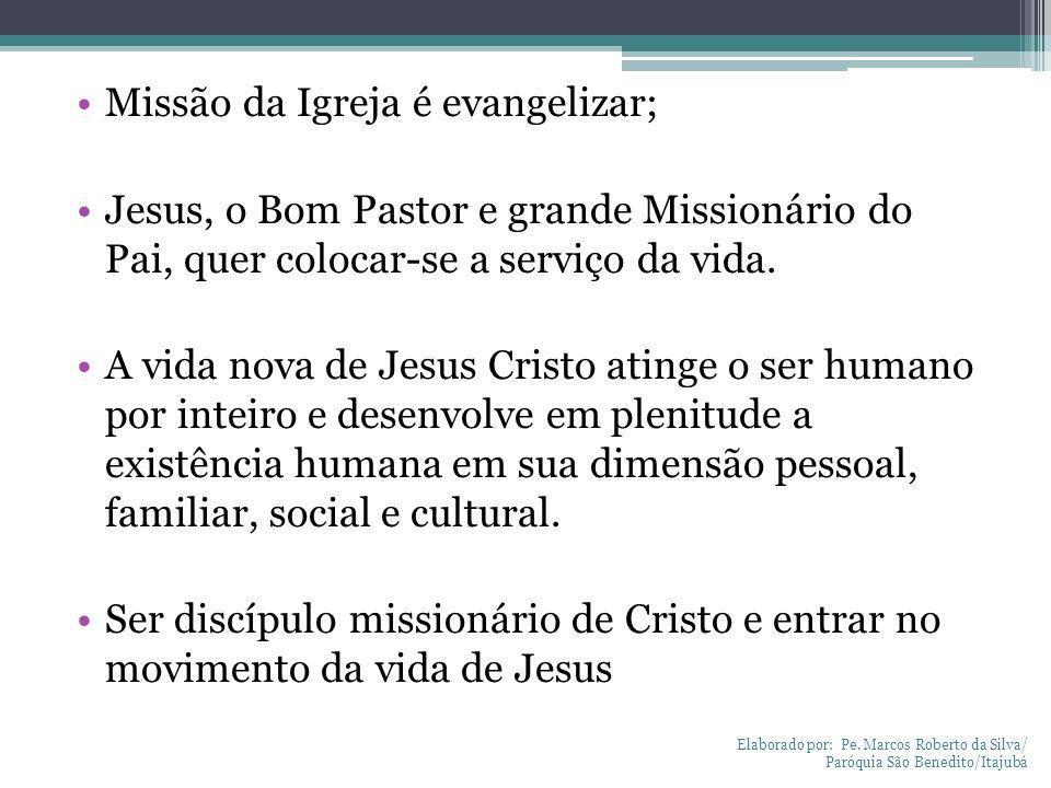 Missão da Igreja é evangelizar;