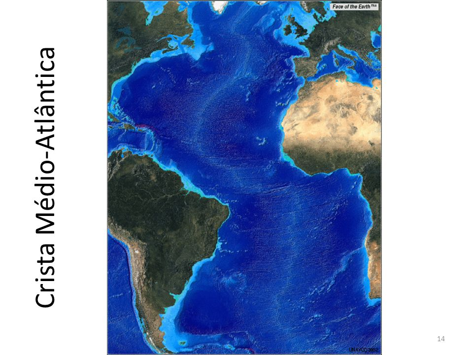 Crista Médio-Atlântica