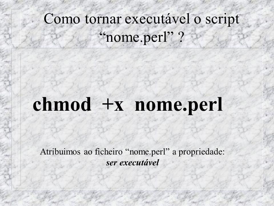 Como tornar executável o script nome.perl