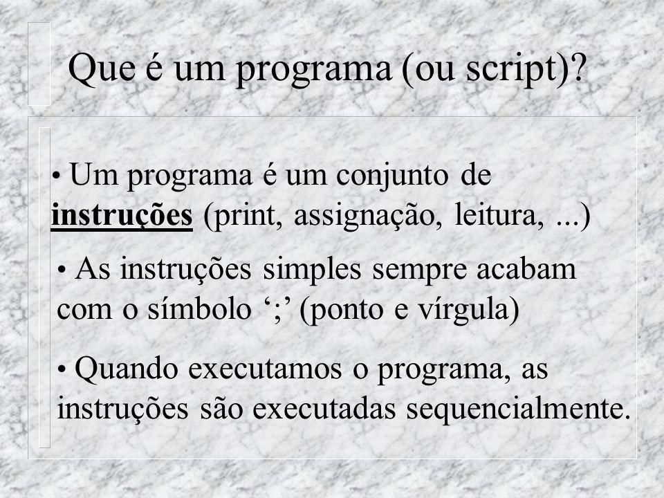 Que é um programa (ou script)