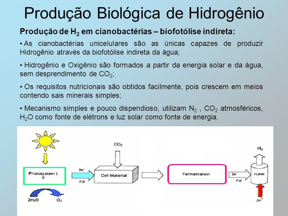 Produção Biológica de Hidrogênio