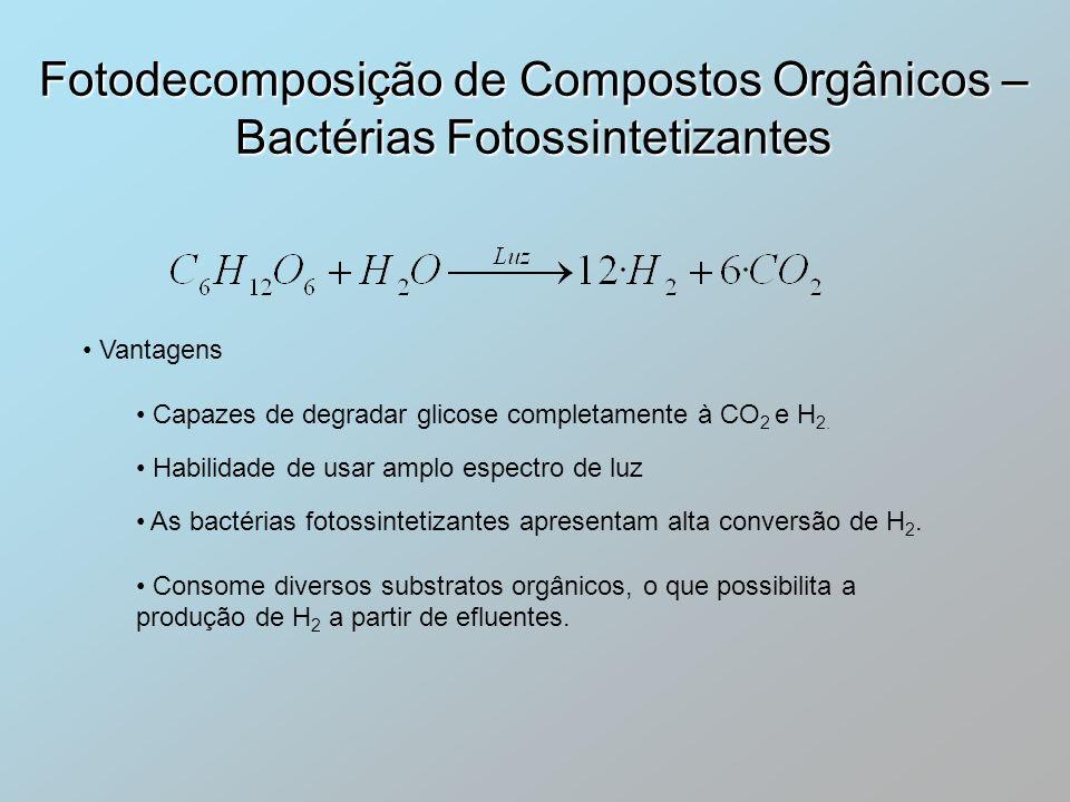 Fotodecomposição de Compostos Orgânicos – Bactérias Fotossintetizantes