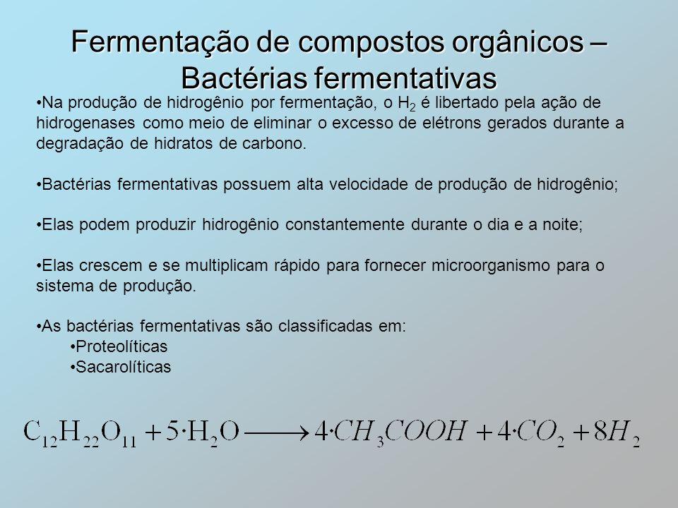 Fermentação de compostos orgânicos – Bactérias fermentativas