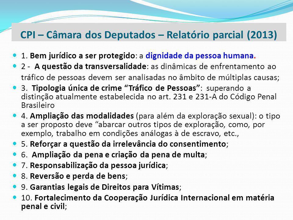 CPI – Câmara dos Deputados – Relatório parcial (2013)