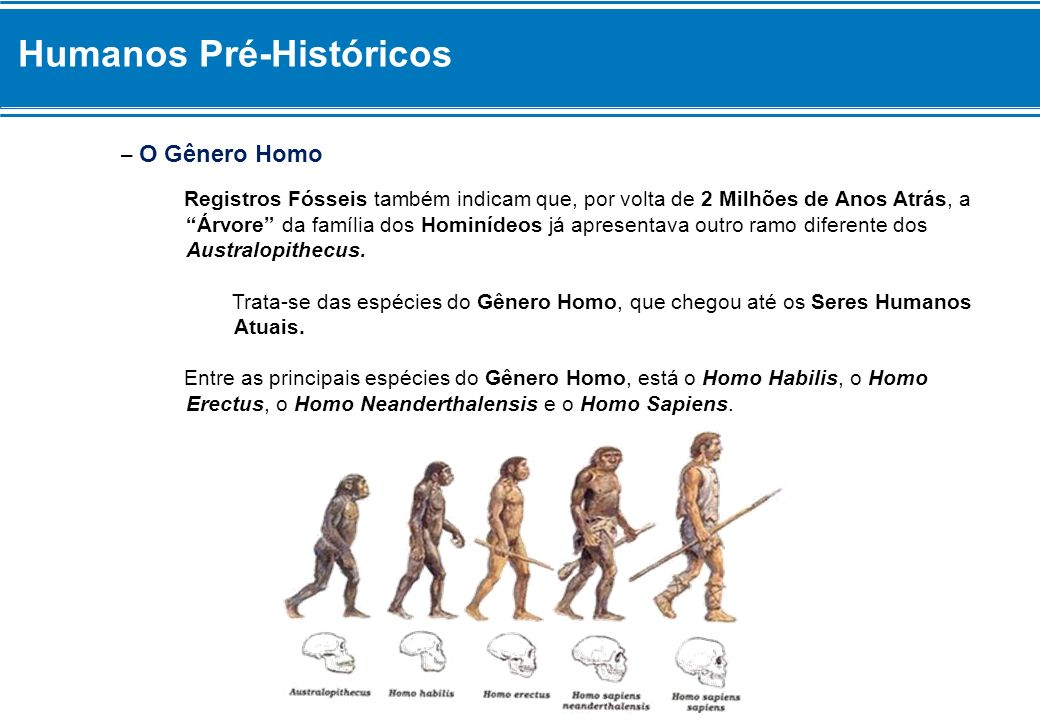Humanos Pré-Históricos