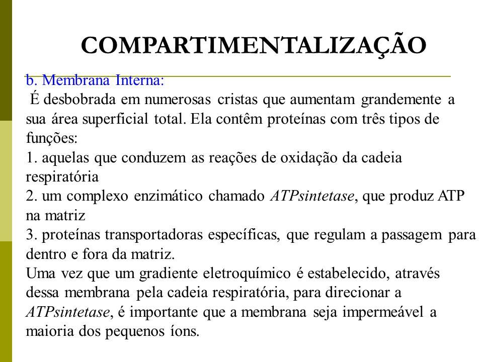 COMPARTIMENTALIZAÇÃO