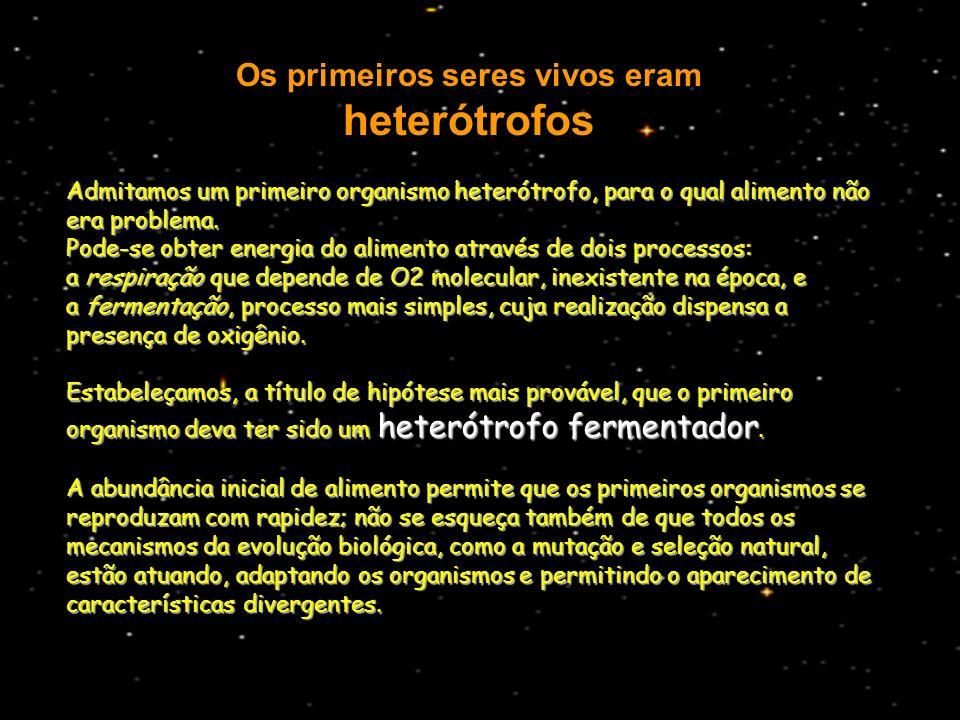 Os primeiros seres vivos eram heterótrofos