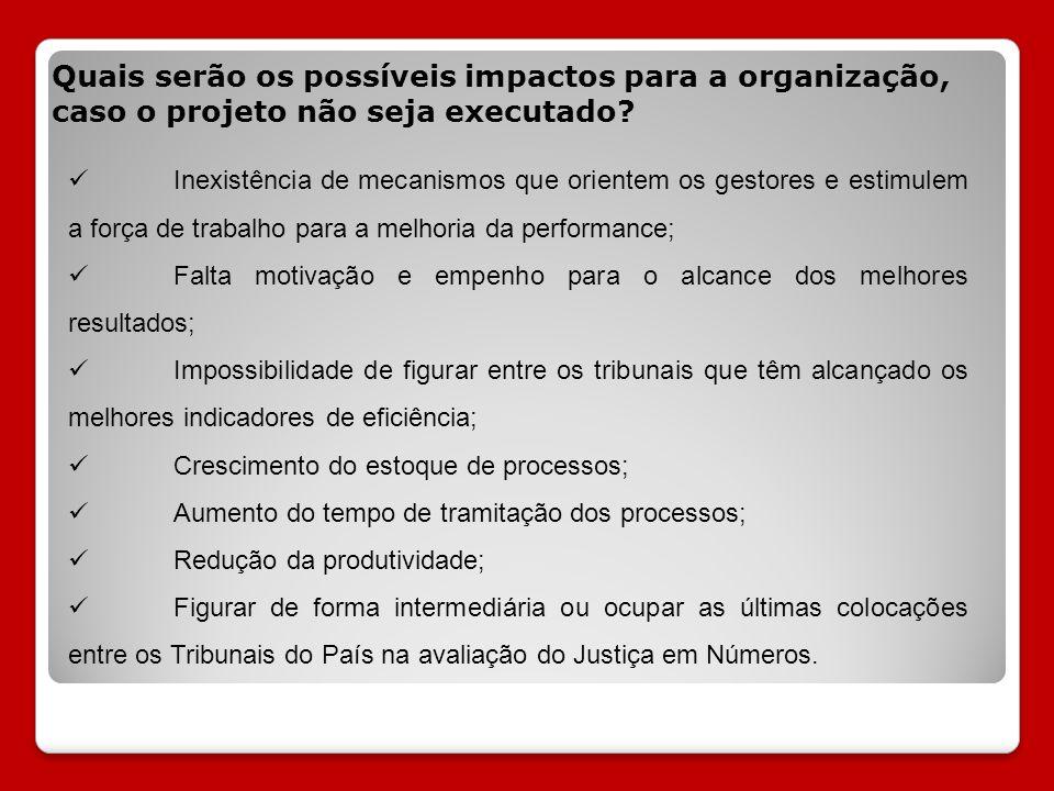 Quais serão os possíveis impactos para a organização, caso o projeto não seja executado
