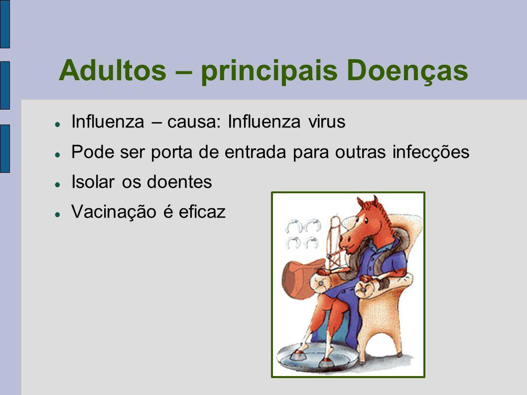 Adultos – principais Doenças