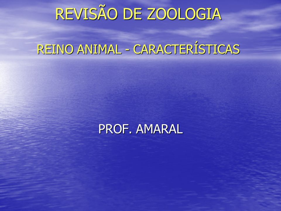 REVISÃO DE ZOOLOGIA REINO ANIMAL - CARACTERÍSTICAS