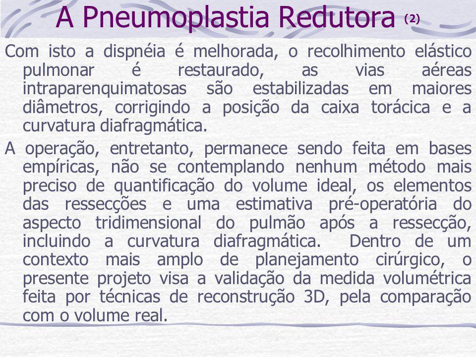 A Pneumoplastia Redutora (2)