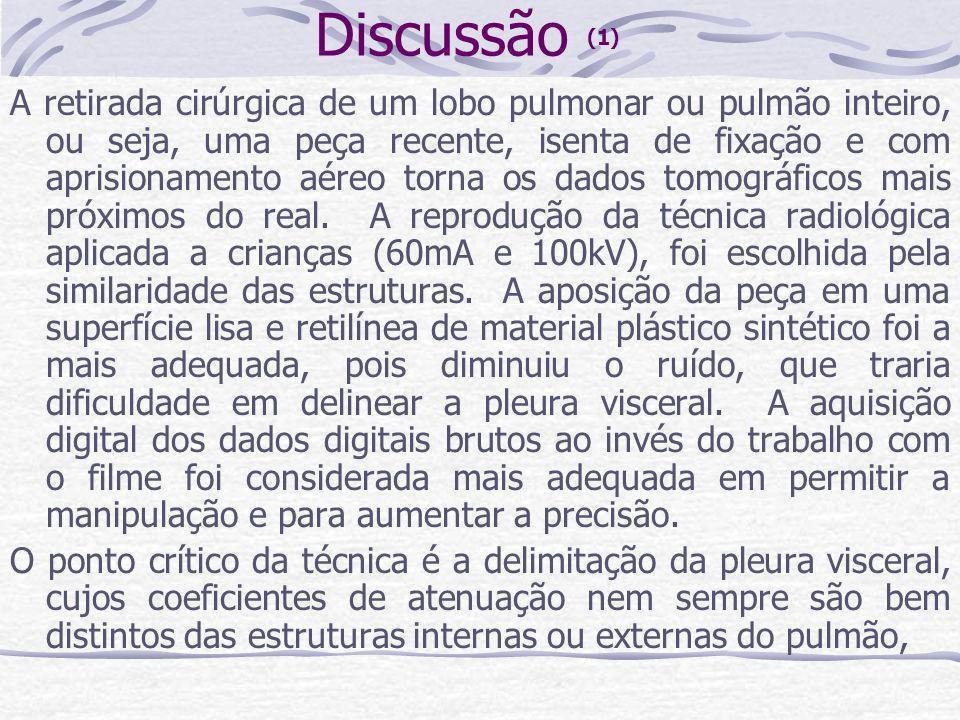 Discussão (1)