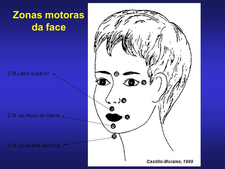 Zonas motoras da face Z.M.Lábio superior Z.M. do Musc.do Mento