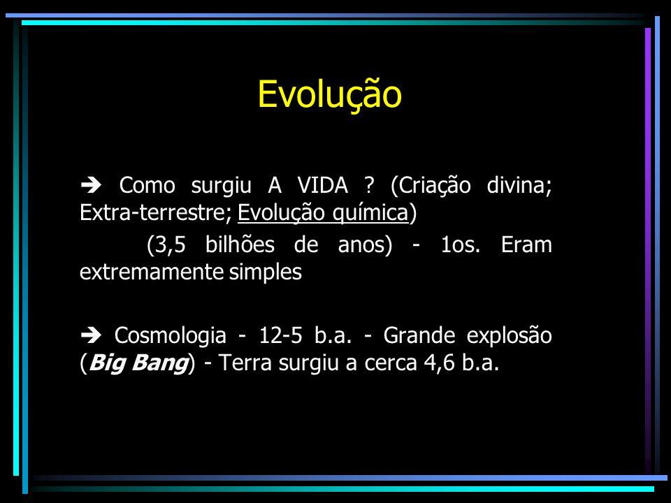 Evolução  Como surgiu A VIDA (Criação divina; Extra-terrestre; Evolução química) (3,5 bilhões de anos) - 1os. Eram extremamente simples.