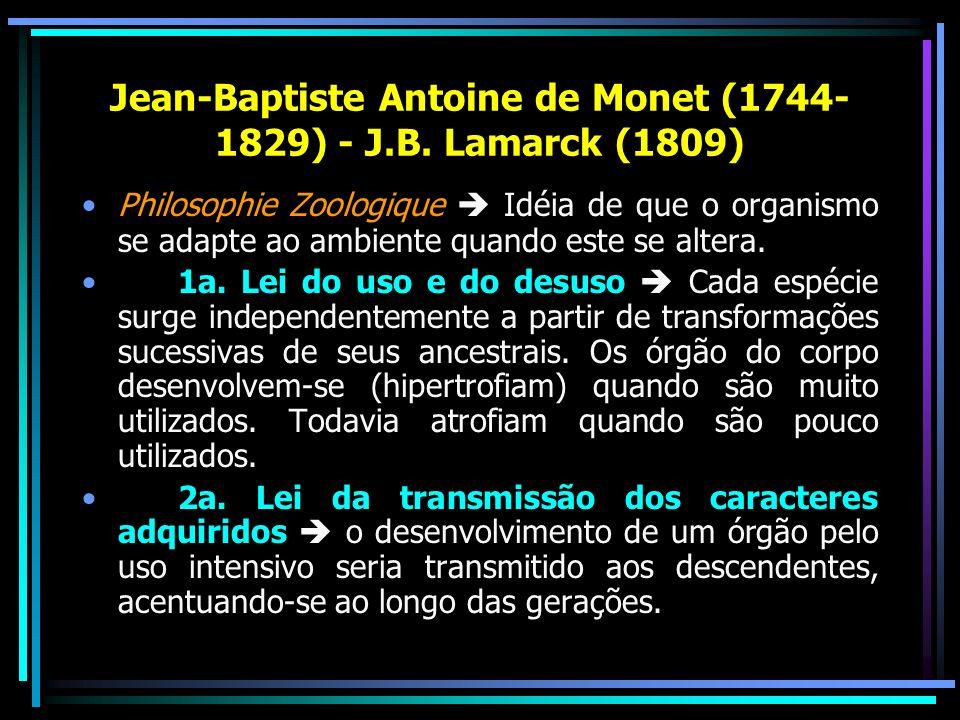 Jean-Baptiste Antoine de Monet (1744-1829) - J.B. Lamarck (1809)
