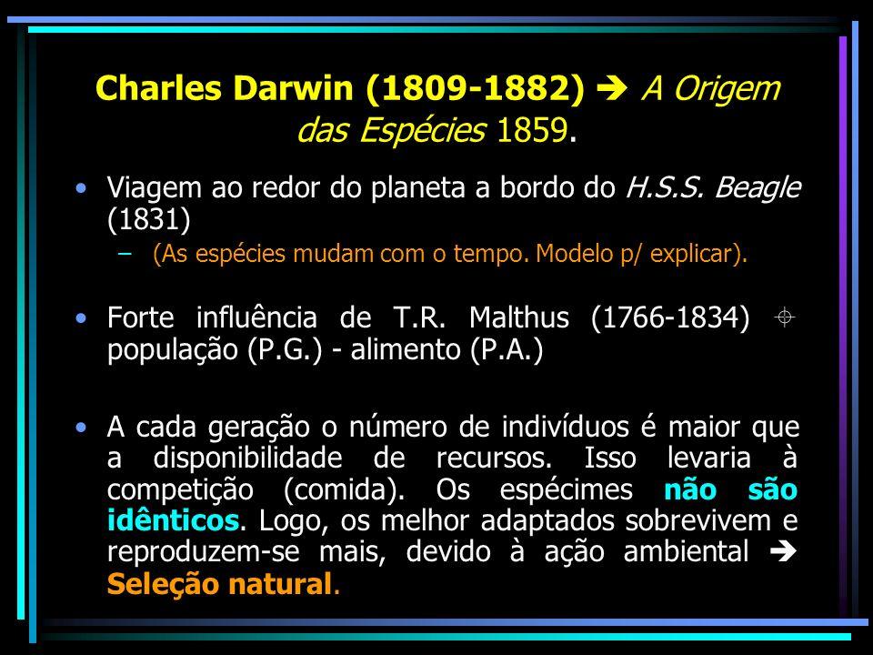 Charles Darwin (1809-1882)  A Origem das Espécies 1859.