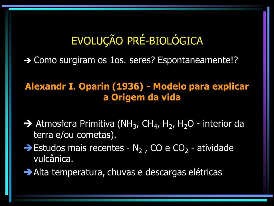 EVOLUÇÃO PRÉ-BIOLÓGICA