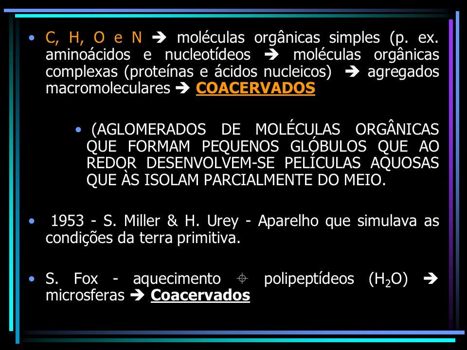 C, H, O e N  moléculas orgânicas simples (p. ex