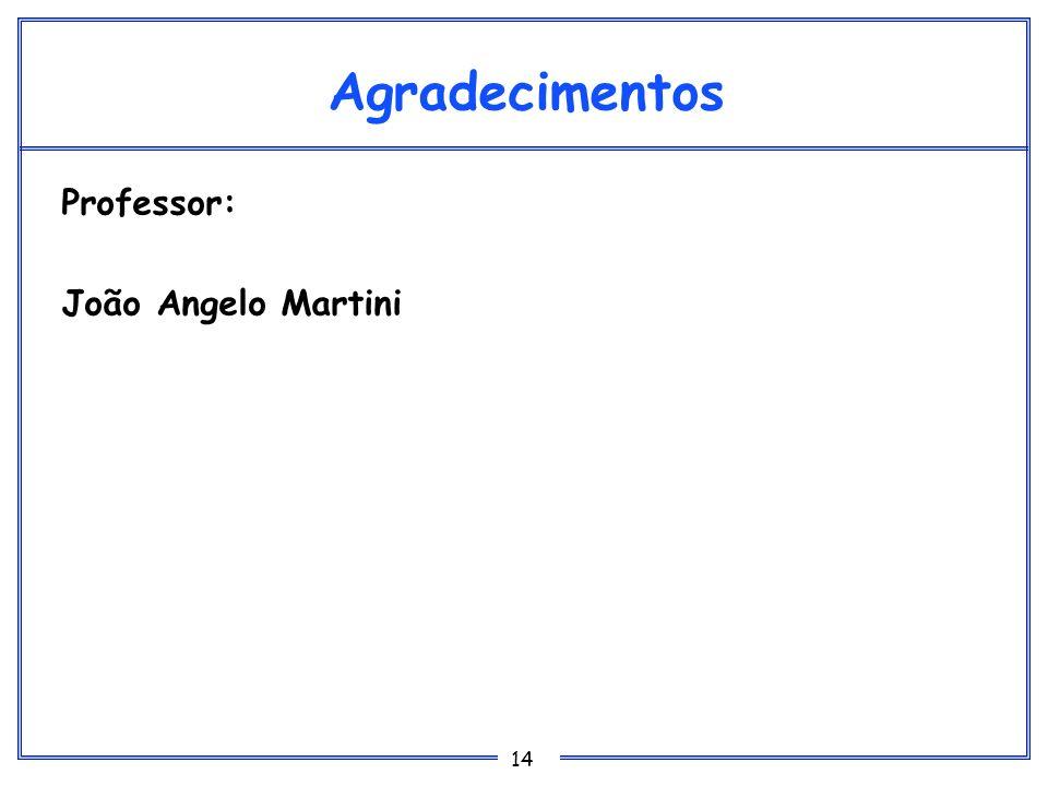 Agradecimentos Professor: João Angelo Martini