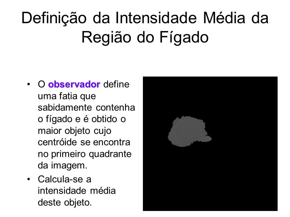 Definição da Intensidade Média da Região do Fígado