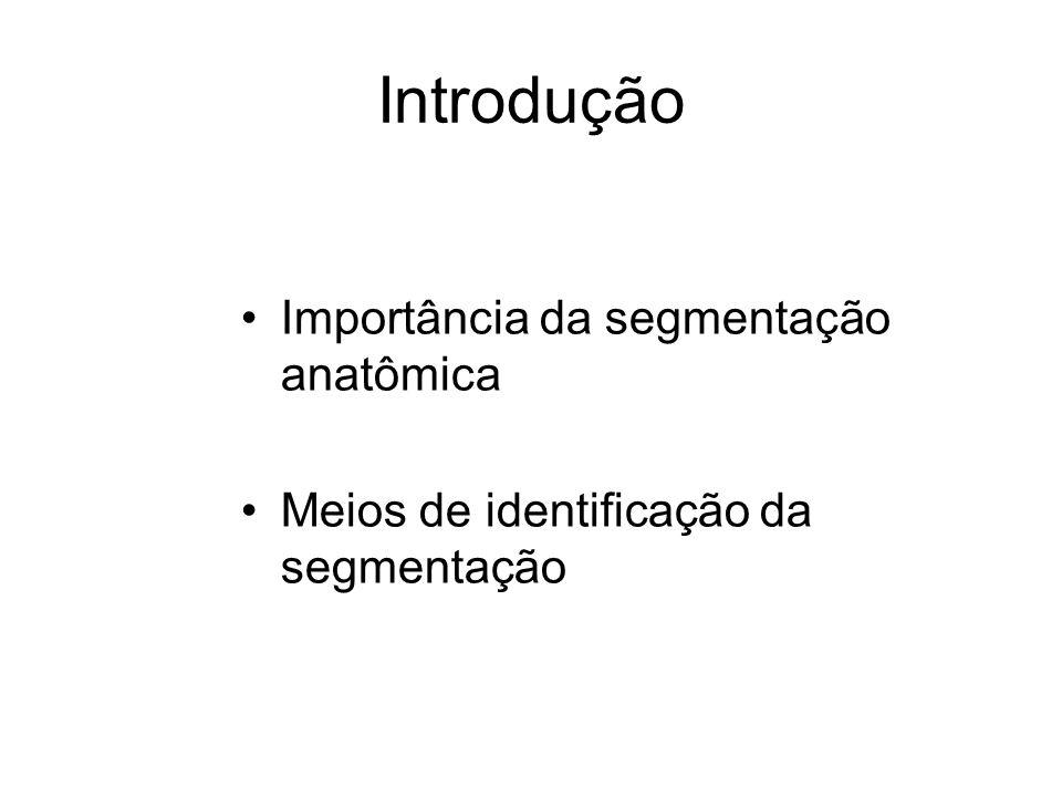 Introdução Importância da segmentação anatômica