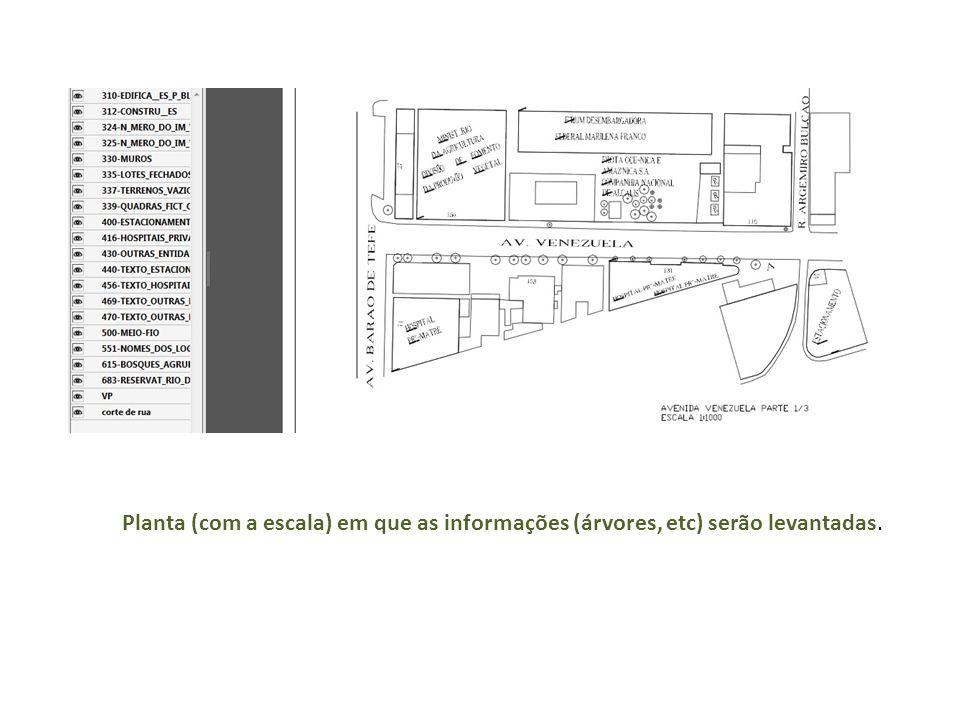Planta (com a escala) em que as informações (árvores, etc) serão levantadas.